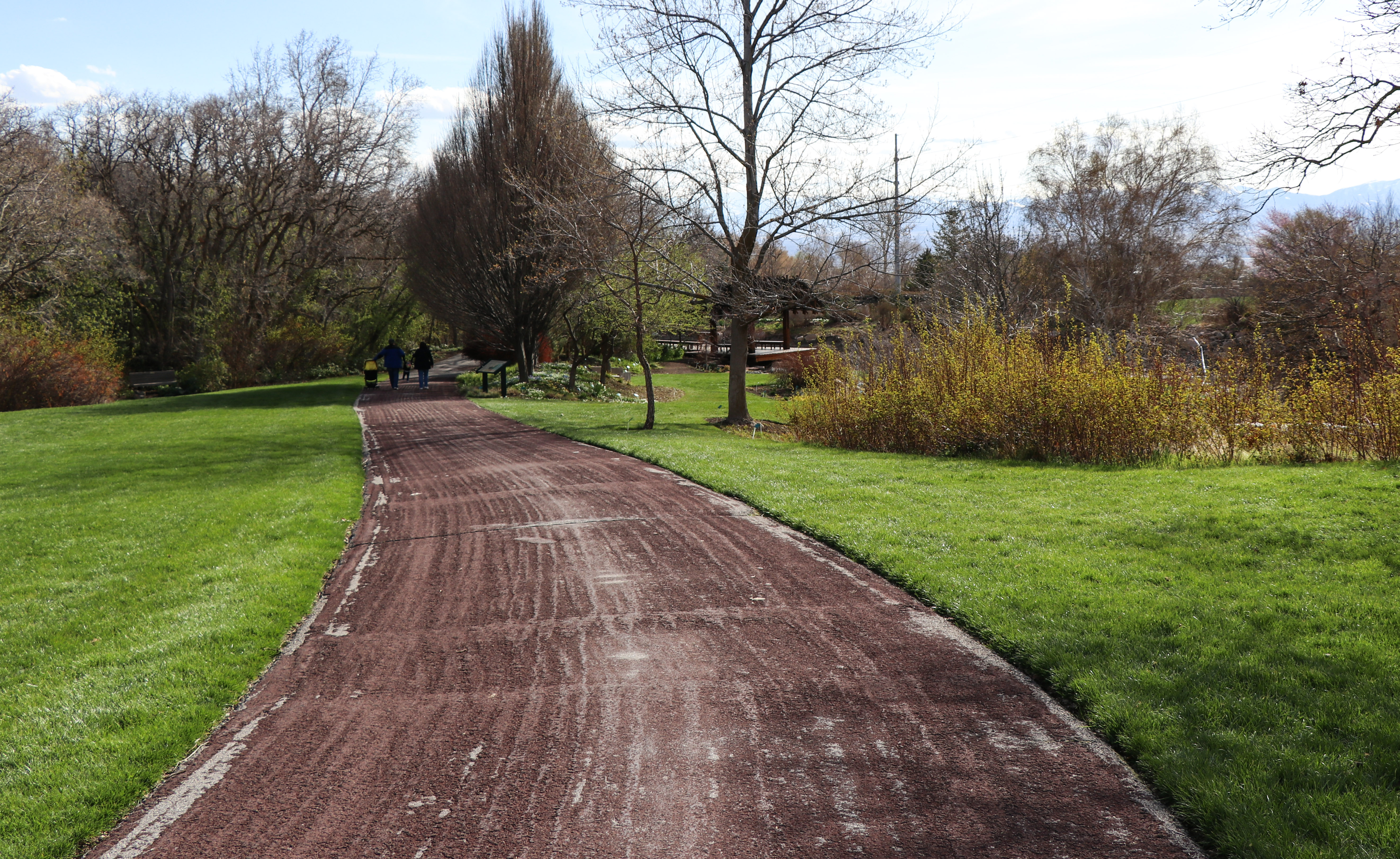 An early spring visit to Red Butte Garden produced the most gorgeous views.
